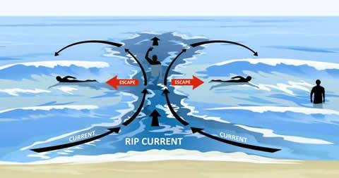 Ако видите това в морето, не си и помисляйте да влизате