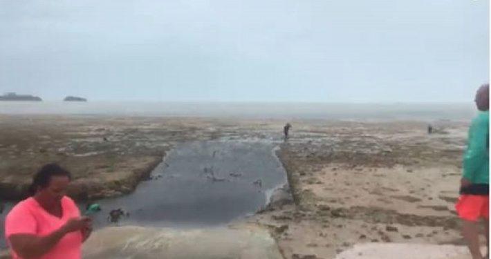 """zastrahovam.com-Феномен! Ураганът """"Ирма"""" изсмука водата водата край плажовете на Бахамите"""